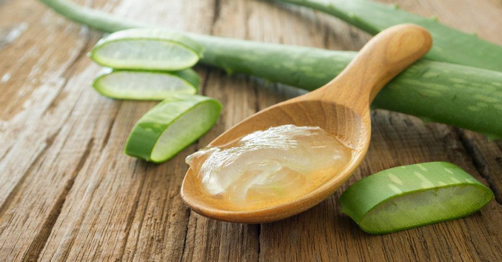 Aloe vera, un método casero fácil para aclarar codos y rodillas.